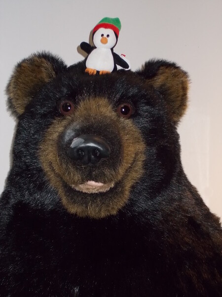 Happy bear with Pengy in Anchorage.