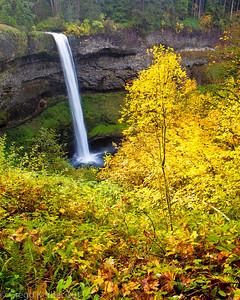 South Falls (Oct. 2011)