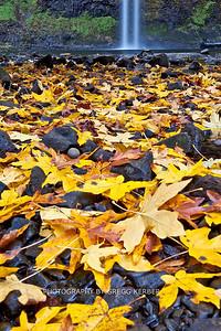 South Falls (Fall 2007)