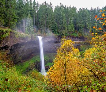 South Falls (10/29/2014)