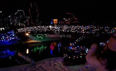Irene Cook - Bridge of lights