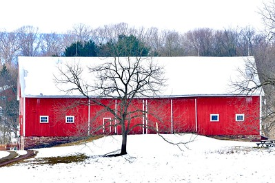McLean Barn in Winter