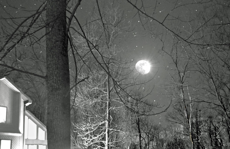 House Light by Moonlight