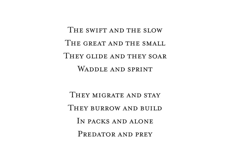 Wildlife Introduction