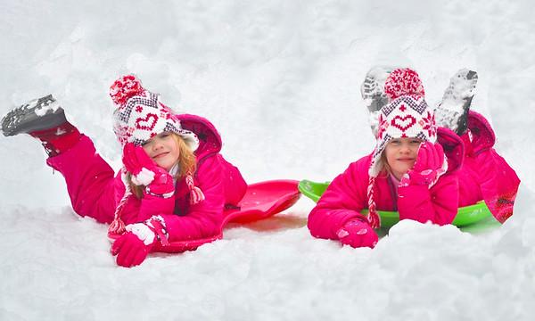 Snowy Twins