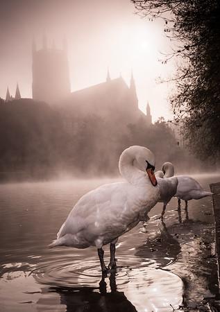 Three Swans, Worcester