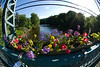 Flower Bridge : As seen through a 180 degree lens.