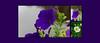 Flower_Bridge_June_2,_2015_18