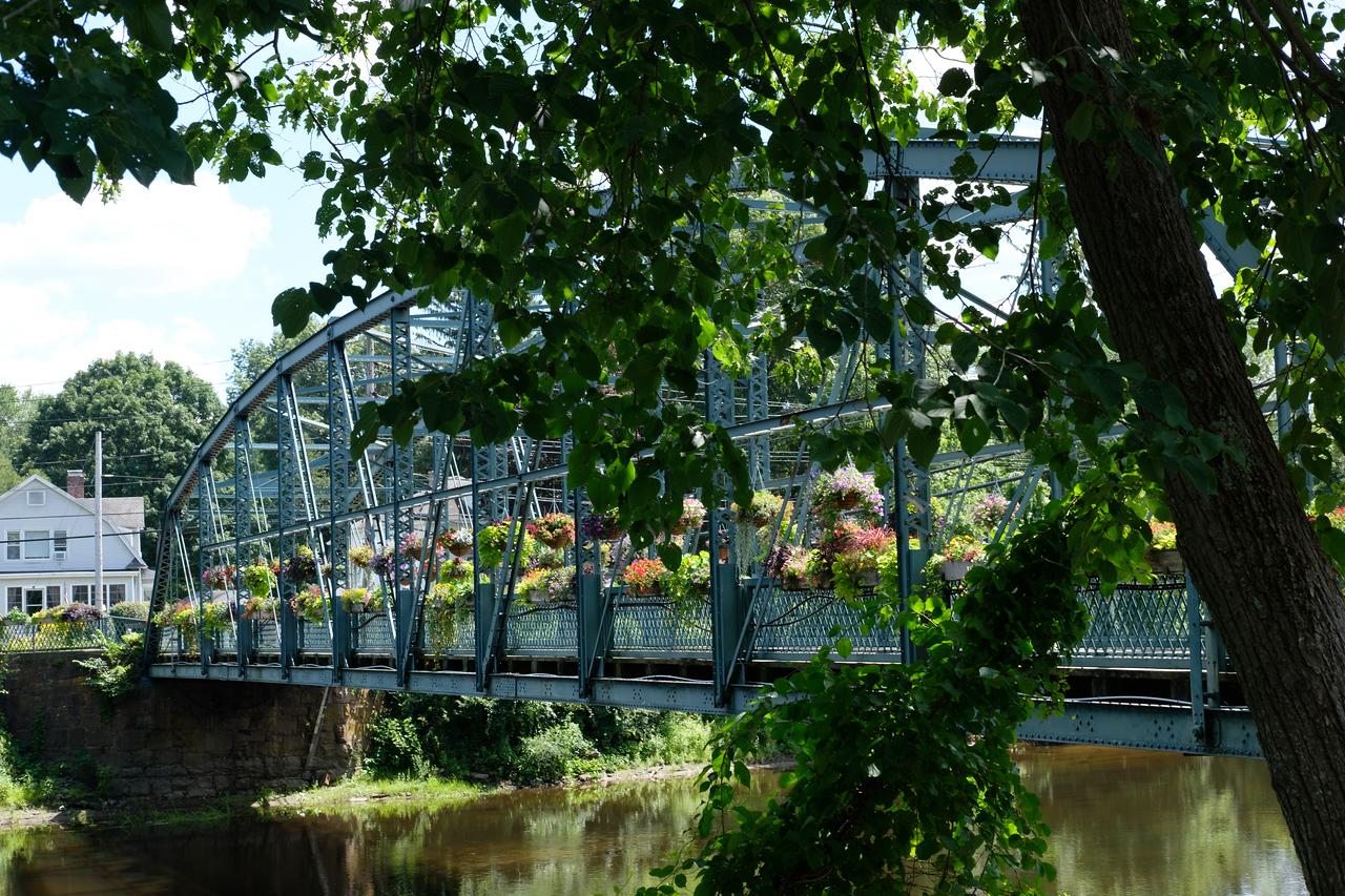 Bridge_July 26, 2017-1071