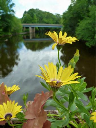 Old Drake Hill Flower Bridge