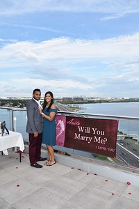 Surprise proposal at Westin Tampa, FL