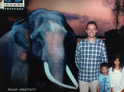 Night safari on Saturday, bats, leopards and a fun show