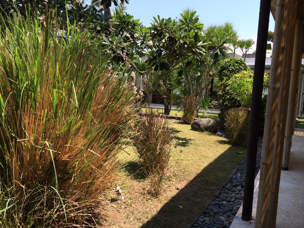 The main courtyard area. To the right of the bamboo poles is the living room.