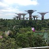 "Gardens by the Bay, created from reclaimed harborfront land, has free walking trails, conservatories, and the ""supertrees""- metal structures with vegetation growing up the sides"