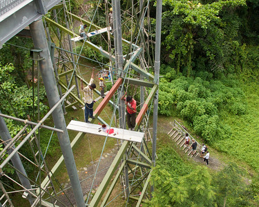 Workers painting the treetop walk on the Southern Ridges Trail