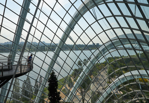 Diizzying view high up inside  the Cloud Forest dome in Gardens By The Bay