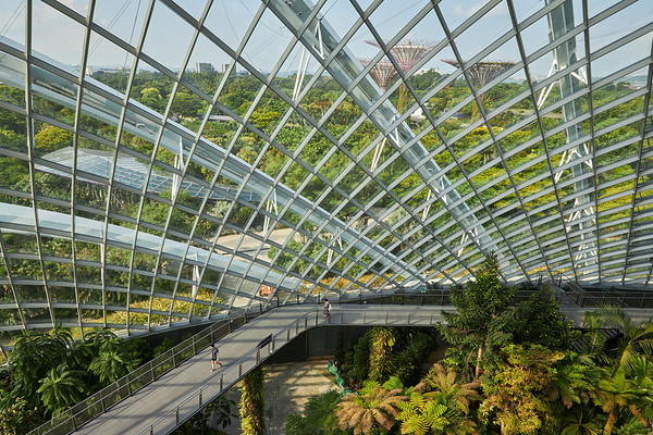 View high up inside  the Cloud Forest dome in Gardens By The Bay
