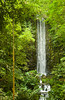 Rain forest waterfall at the Jurong Bird Park in Singapore, East Asia.