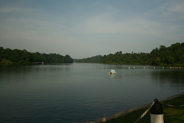 Macritchie Resivoir and tree top walk  2013