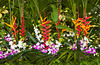 Tropical foliage arrangement with orchids and heliconia flowers on Sentosa Island, Singapore, East Asia.