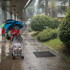 When it rains in Singapore, it is a challenge to find a taxi. Going on foot (or by pram) is faster.