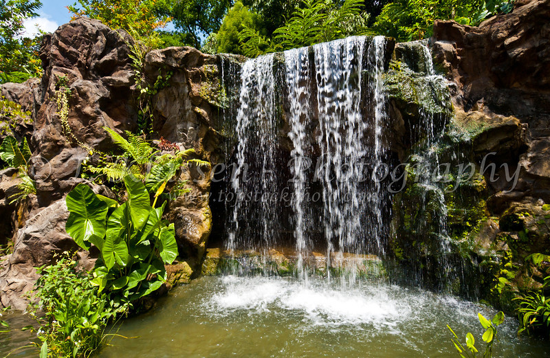 Water falls in the Singapore Botanic Gardens, East Asia.