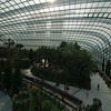 The Flower Dome at the Gardens by the Bay