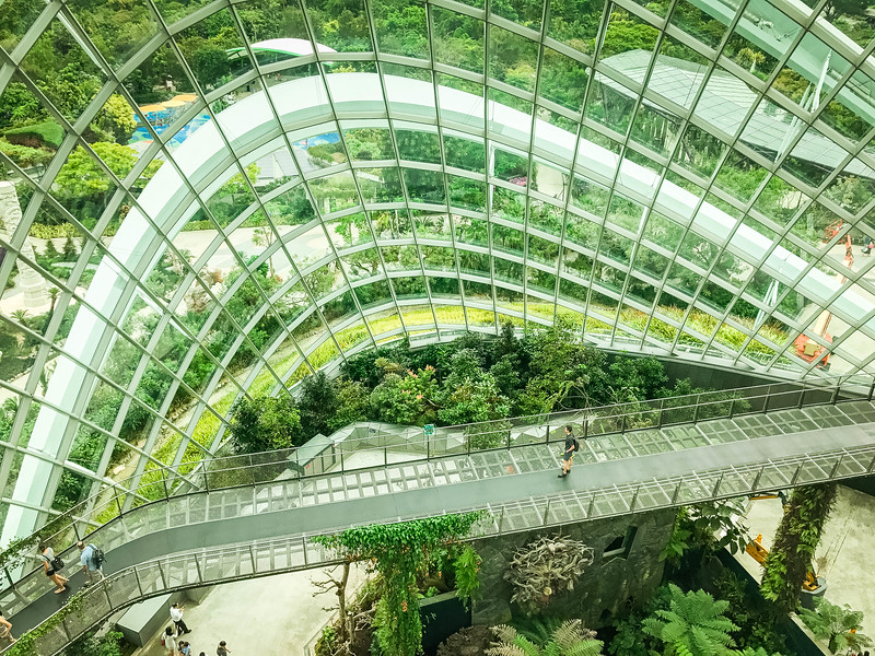 cloud forest gardens by the bay tour