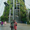 The Cloud Forest at the Gardens by the Bay