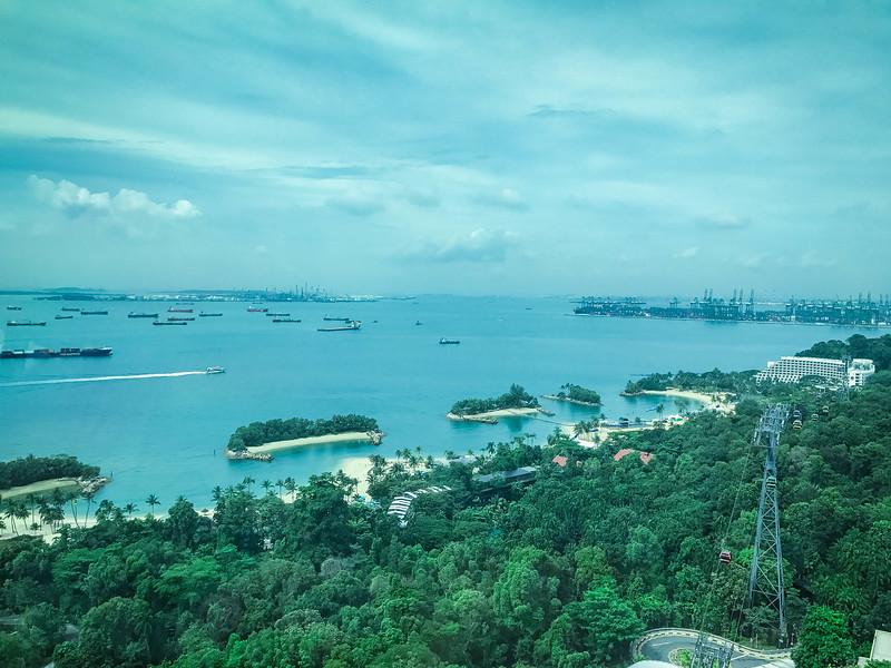 tiger sky tower panoramic views