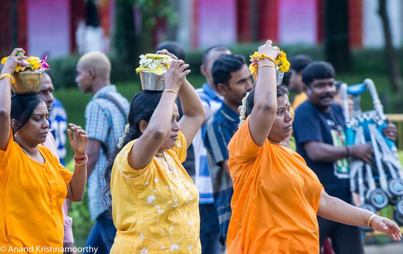 Thaipusam Festival 2016