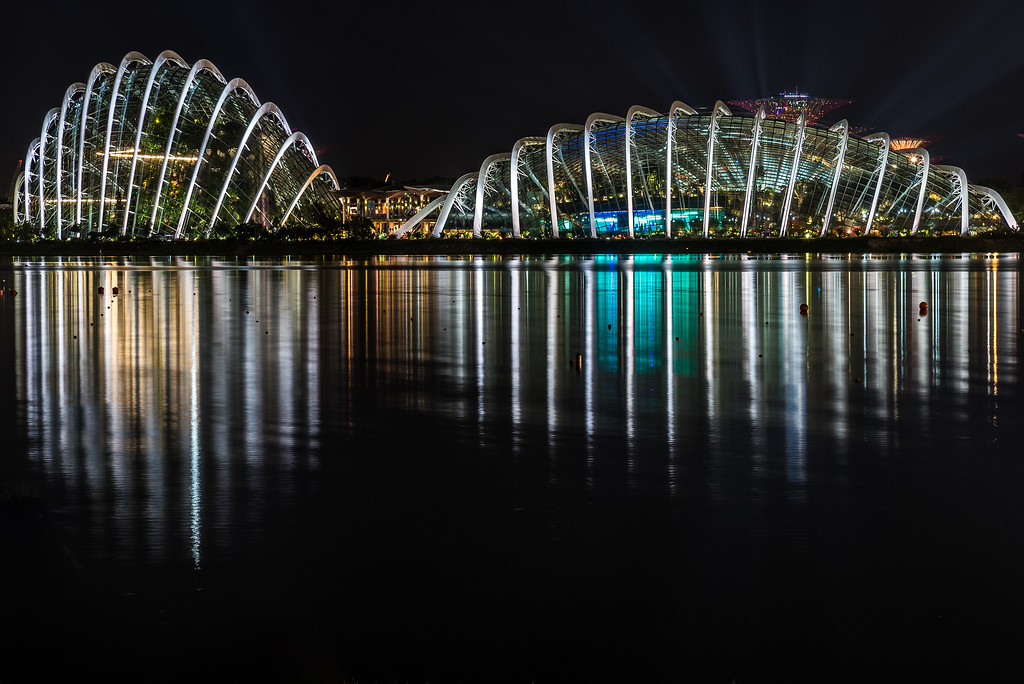 View of Gardens by the Bay at night.