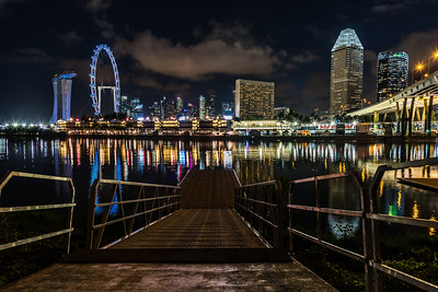 View of Marina Bay skyline from Gardens by the Bay East.