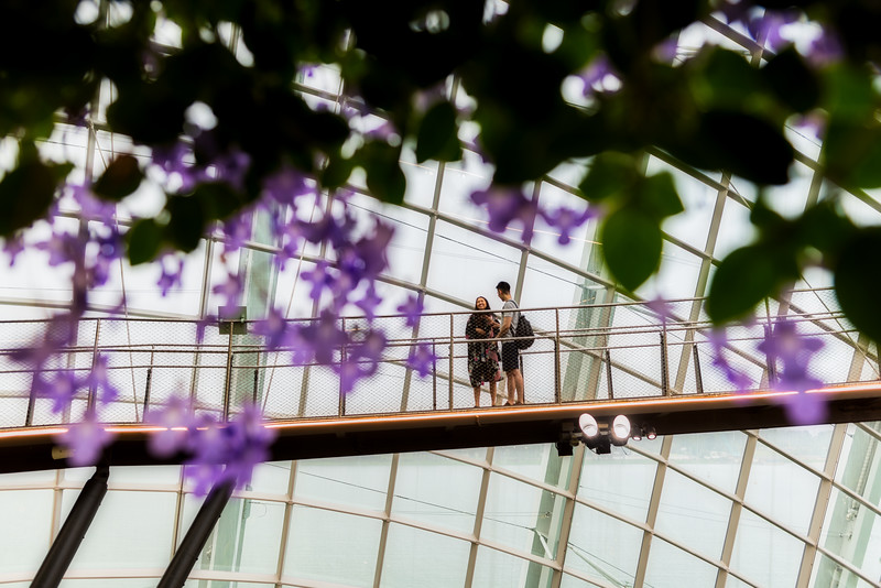 Couple at Cloud Forest Dome.