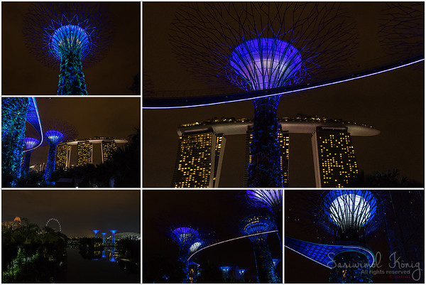 Singapore Flyer and Supertree Grove at night