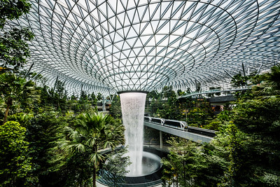 The Rain Vortex at Jewel Changi Airport.
