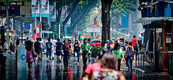 Orchard Road,  after the daily rain, 2012 April