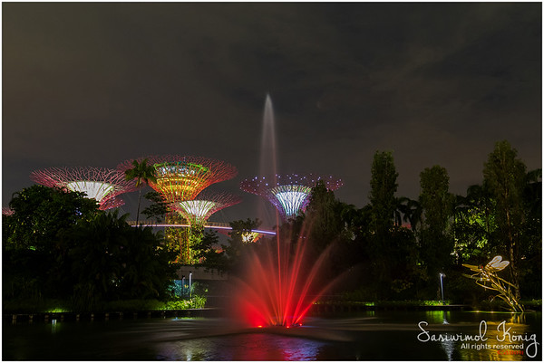 Dragonfly Lake - Gardens by the bay