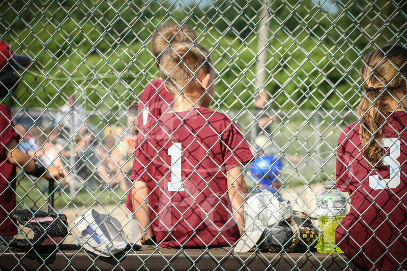 T-ball (20 of 176)