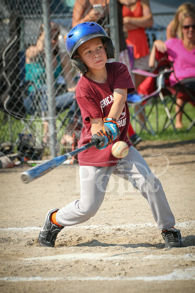 T-ball (78 of 176)