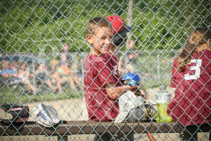 T-ball (21 of 176)