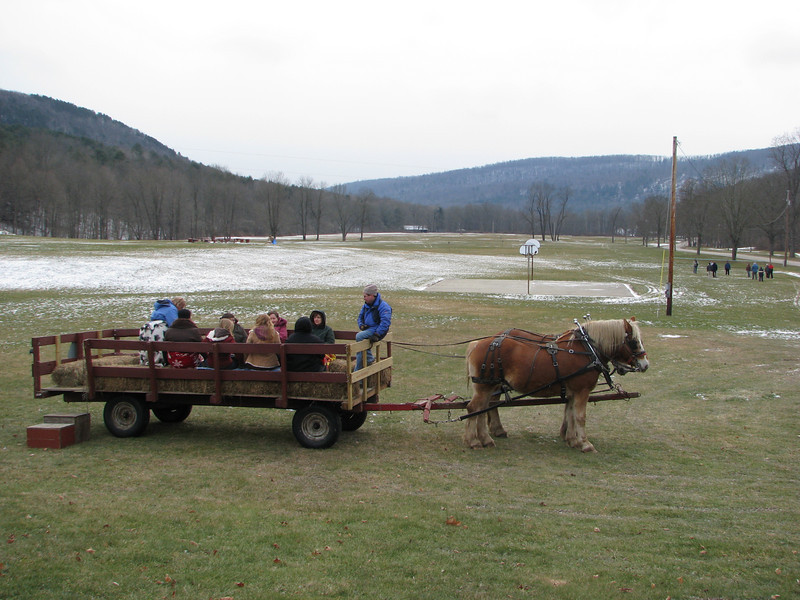 Neil Soder, program director at Watson Homestead (in the blue jacket with scarf), treated participants to a horse-drawn wagon ride.