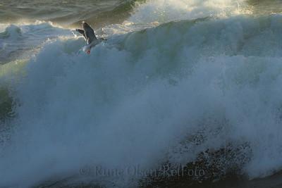 Forsering av bølgevegg