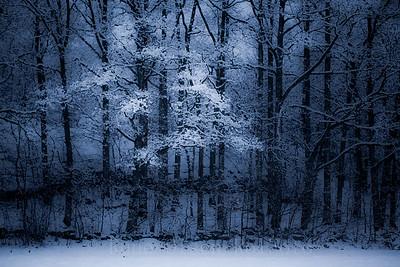 Fanget i vinteren