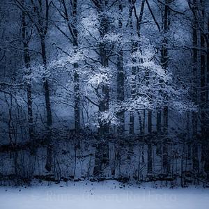 Vintergrepet