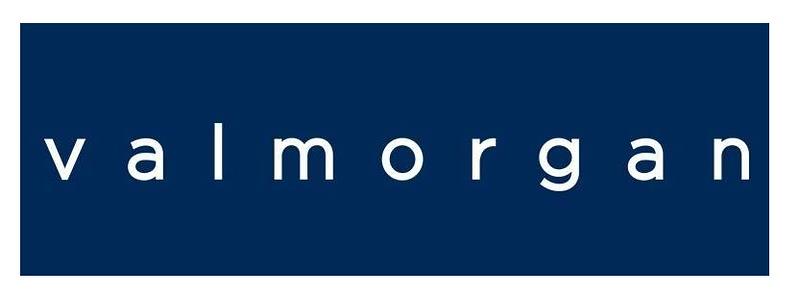 Val Morgan Digital logo