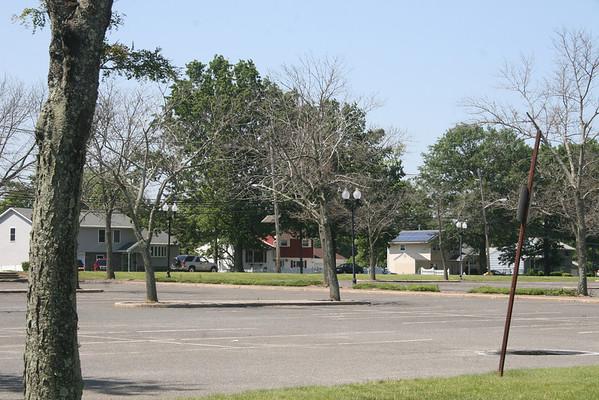 EB Vo Tech Honey Locust tree loss, June 2013