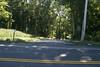 driveway along edge of lot 9