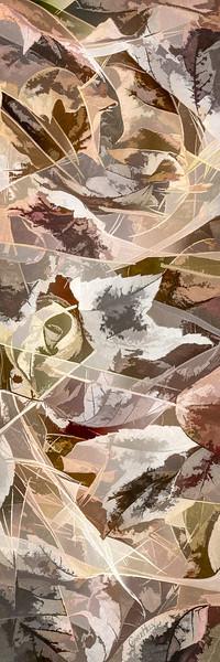 Leaves #169 - Subtly Soft Series