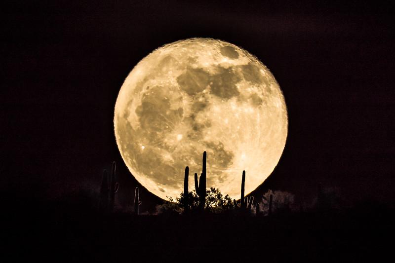 Moonrise  #1.